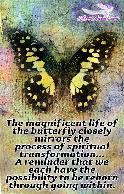 Butterfly Meaning – The Symbolism Will Surprise You